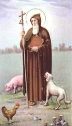 Sant'Antonio Abate, santo degli animali